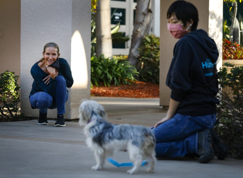 Alyson Yoo of the San Diego Humane Society brings Dori the terrier mix to Beth Spangler, her new adoptive owner.