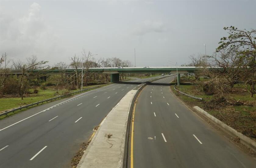 Aspecto de una autopista y los daños en la vegetación cerca a la localidad de Aguas Buenas. EFE/Archivo