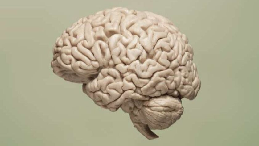 There's new hope of not only delaying, but reversing symptoms of dementia