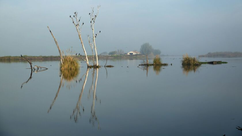 The Middle River in the Sacramento-San Joaquin Delta.