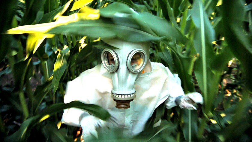 'GMO OMG'