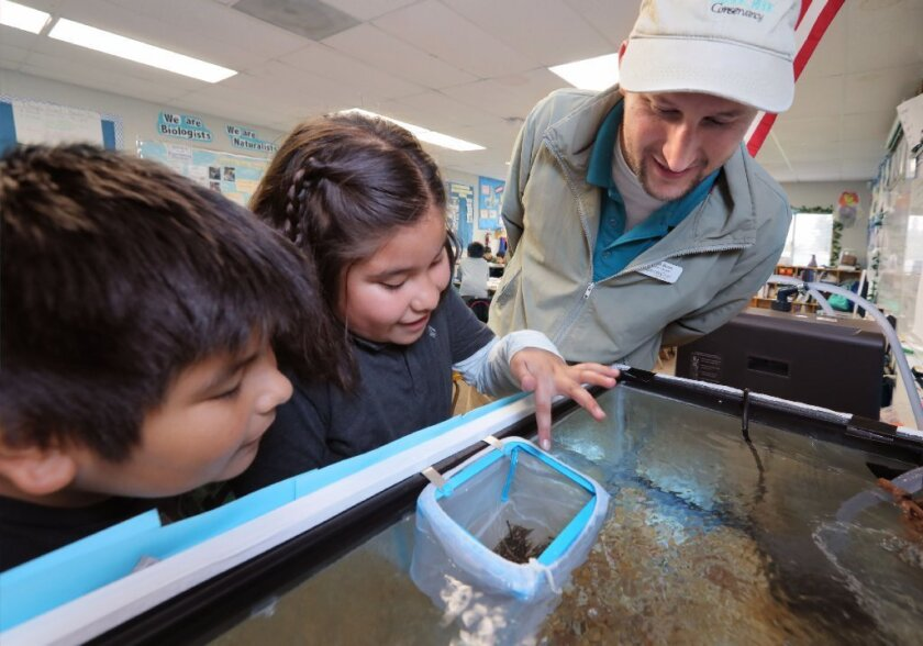 Simon Breen, Education Manager of The Escondido Creek Conservancy, inspects two week old trout with fourth graders Ezekiel Acosta, left, and Karla Gonzalez at Conway Elementary School