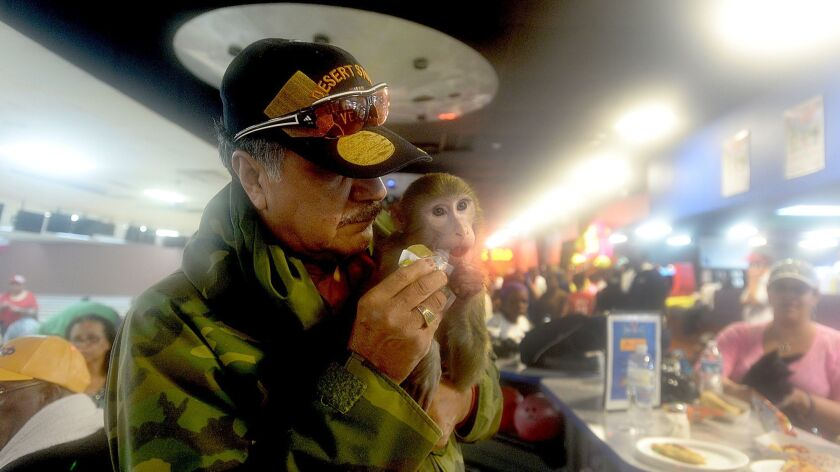 Johnny Colunga feeds Prince, his pet monkey, as they take refuge at Max Bowl.