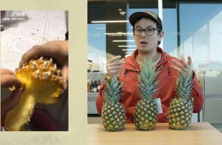 Lucas Peterson debunks the pineapple pull-apart hack