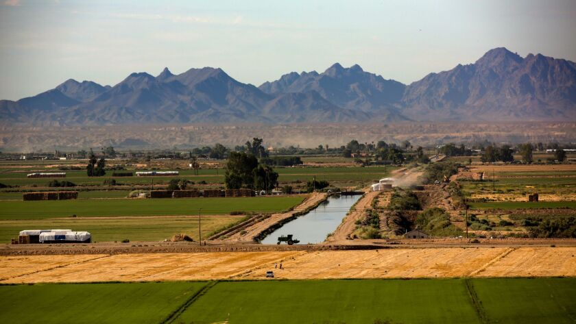 BLYTHE, CA JULY 28, 2015 --- A view of Palo Verde Valley, irrigated by a canal. Metropolitan Water District of Southern California bought farmland in Palo Verde Valley as part of fallowing program so the water can be sent to its urban customers.