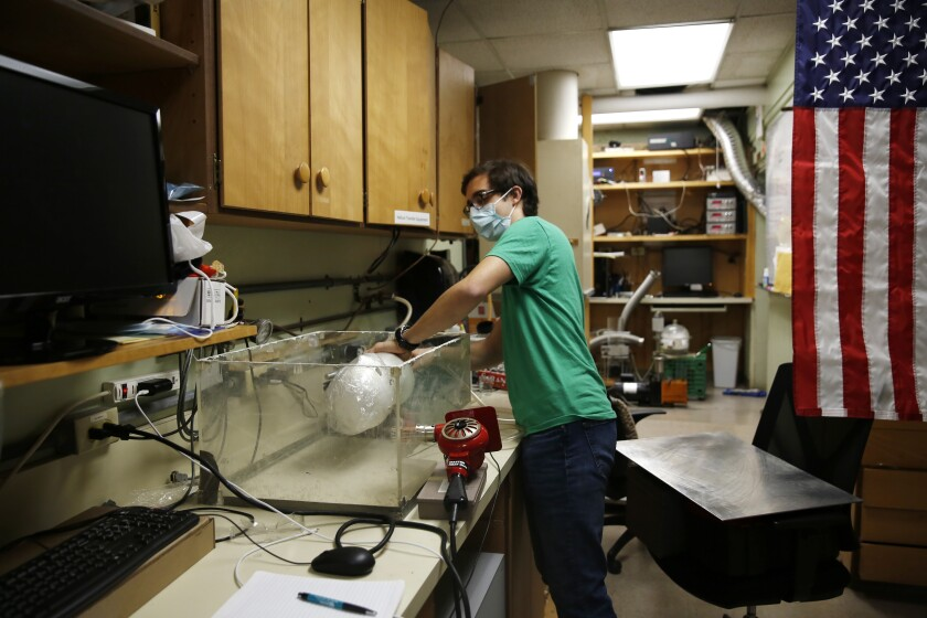 Albert Nazeeri, a Caltech student, demonstrates his system for disinfecting N95 respirators