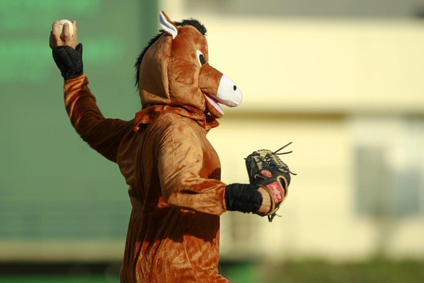 SDSU Halloween game