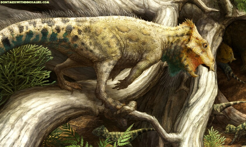 An artist's reconstruction of Aquilops in its environment in ancient Montana.