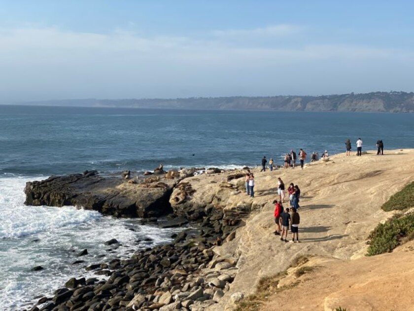 Beach-goers watch the sea lions at Point La Jolla this month.