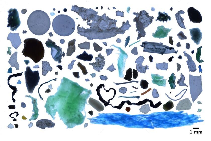 Plastic fragments