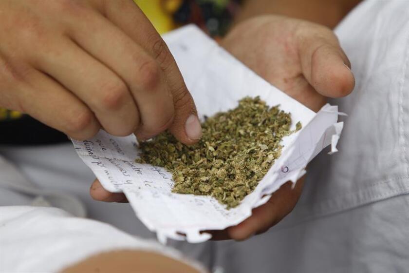 La Suprema Corte de Justicia de la Nación (SCJN) avaló hoy el uso médico de la marihuana y la muerte digna contenidas en la Constitución de Ciudad de México que entrará en vigor el próximo 17 de septiembre. EFE/ARCHIVO