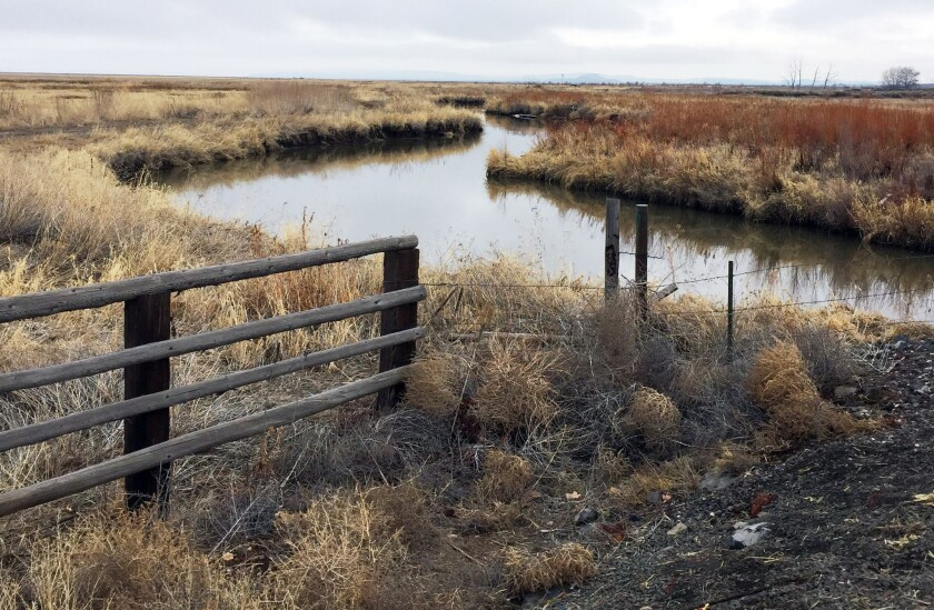 A stream meanders through a portion of the Malheur National Wildlife Refuge outside Burns, Ore., that was closed to the public during an armed occupation.