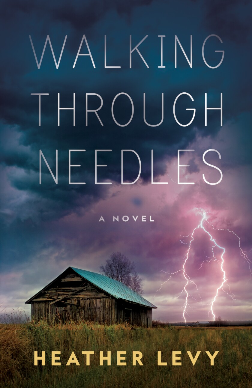 Lightning hits near a wooden shed on a book cover
