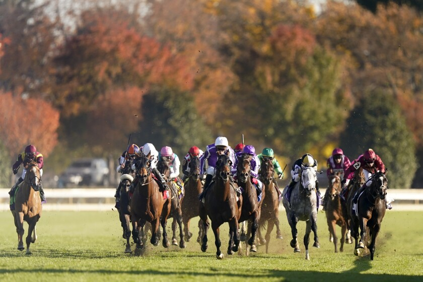 Horses race in the Breeders' Cup Mile at Keeneland Race Course in November.