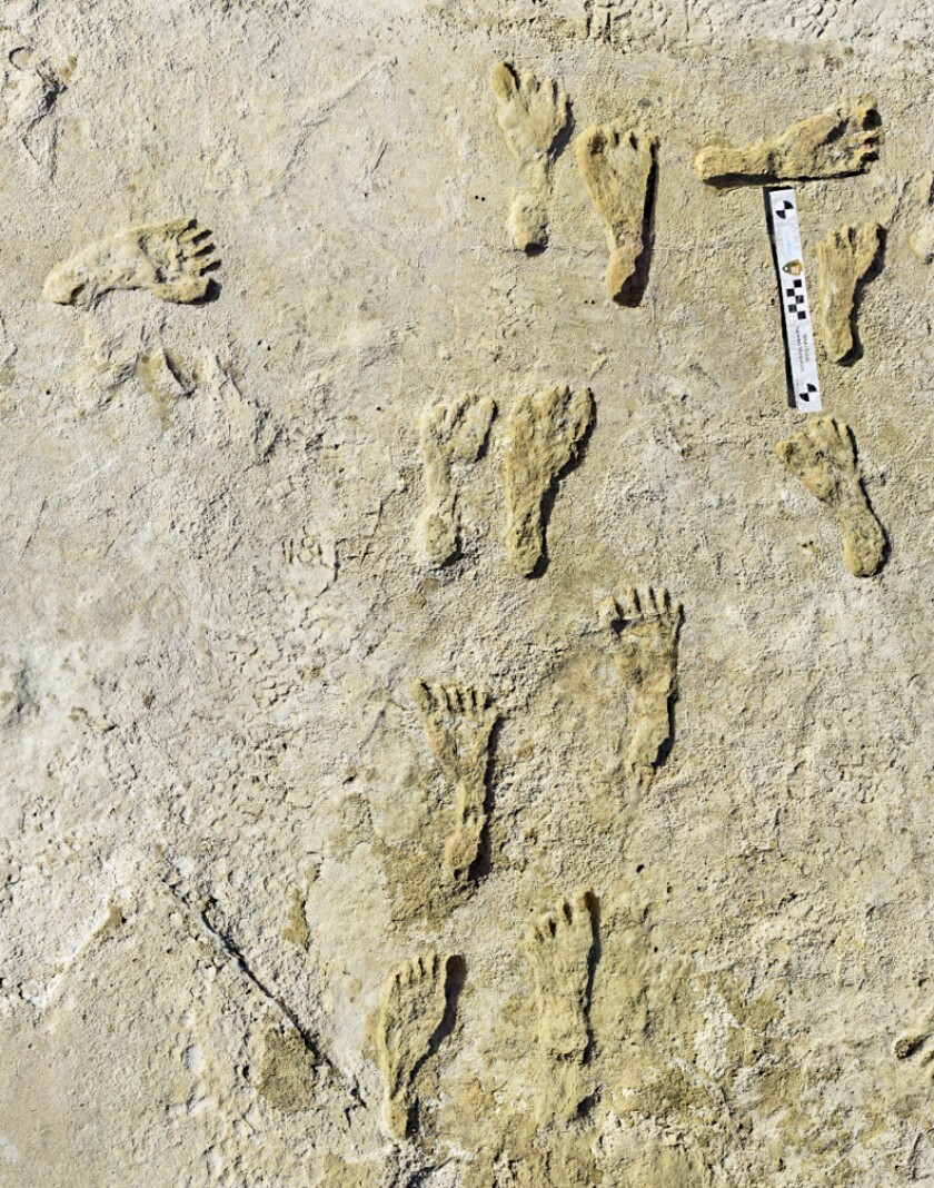 This undated photo made available by the National Park Service in September 2021 shows fossilized human fossilized footprints at the White Sands National Park in New Mexico. According to a report published in the journal Science on Thursday, Sept. 23, 2021, the impressions indicate that early humans were walking across North America around 23,000 years ago, much earlier than scientists previously thought. (NPS via AP)