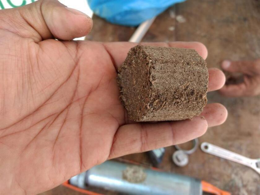 Fotografía de archivo fechada el 13 de diciembre de 2018 y cedida por Biomasa Samajo que muestra combustible hecho con desechos de almendra, en Campeche (México). EFE/ Biomasa Samajo/SOLO USO EDITORIAL