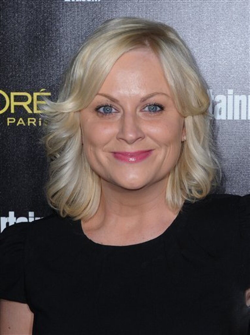 """FILE - In this Jan. 29, 2011 file photo, actress Amy Poehler arrives at Entertainment Weekly's celebration honoring the 17th Annual Screen Actors Guild Awards Nominees at Chateau Marmont in Los Angeles. Harvard University announced Tuesday, April 5, 2011 that Poehler has been selected as this year's """"Senior Class Day"""" speaker. Poehler, a Massachusetts native, will address graduates and their families in Harvard Yard's Tercentenary Theatre on May 25. (AP Photo/Katy Winn, file)"""