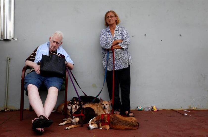 Una pareja de ancianos junto a sus perros en San Juan, Puerto Rico. EFE/Archivo