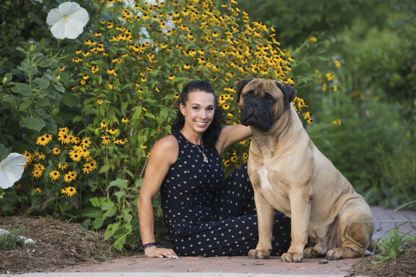 In this undated photo provided by Cassandra Carpenter, handler Cassandra Carpenter poses with Titus, a bullmastiff. Cassandra says Titus was bitten by a snake on his back left leg in March 2019 in North Carolina. Titus went through extensive treatment and recovery and still has a scar from the episode. He is entered in the Westminster Kennel Club dog show in New York. (Amber Jade via AP)