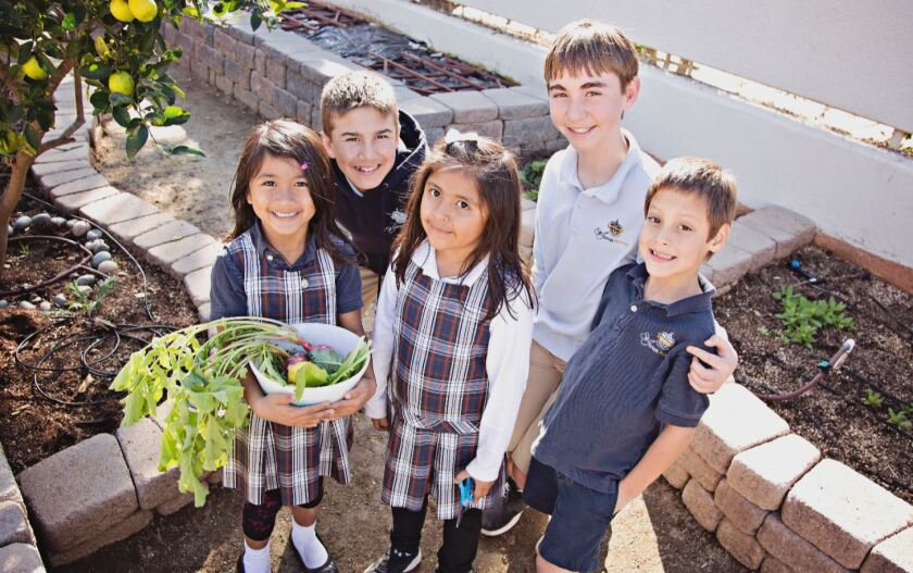 St. James students enjoy the garden bounty at their Green Ribbon School.