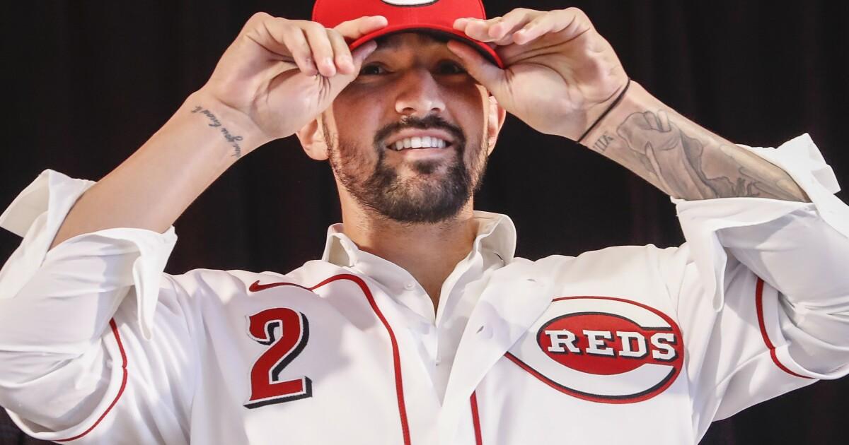 Progress report: Cincinnati Reds