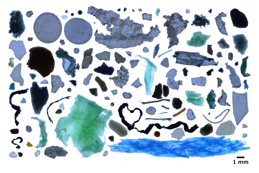A photo collage shows plastic fragments found in the Arctic Ocean. While plastic debris was scarce in most of the Arctic waters, it reached high concentrations in areas of the Greenland and Barents seas.