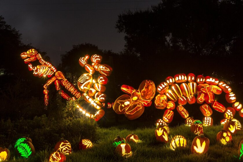 Rise of the Jack O'Lanterns features 5,000 hand-carved jack o'lanterns.