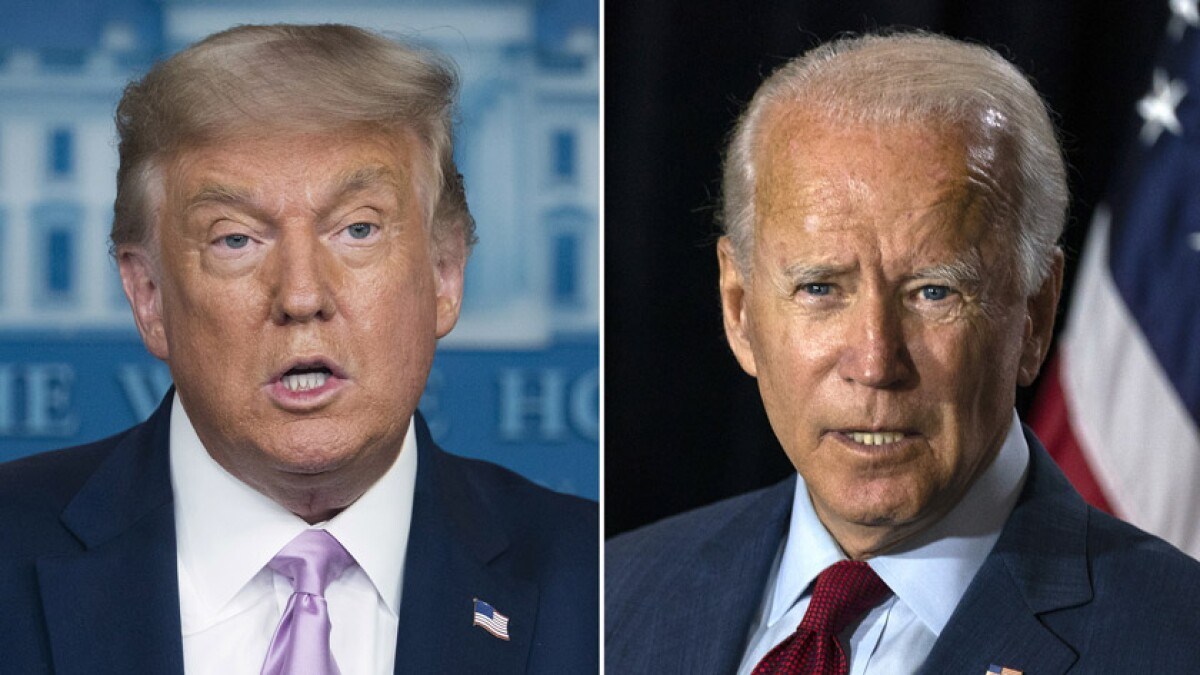 Trump vs. Biden: Comparing policies on race, immigration, climate and more - Los Angeles Times