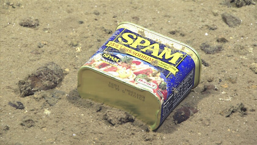A container of Spam rests at 4,947 meters on the slopes of a canyon leading to the Sirena Deep in the Mariana trench.