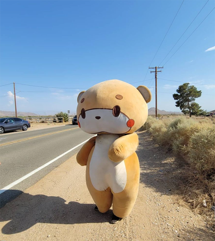 A person in a bear costume stands on the unpaved shoulder of a remote highway