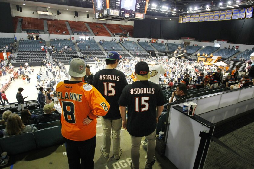 The Gulls are planning more fan events, like the Hockey Fest held earlier this year, to build interest in the team's inaugural season.