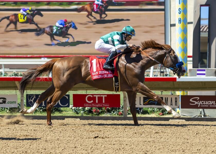Catalina Cruiser, with jockey Joel Rosario, wins the Grade II $200,000 San Diego Handicap at Del Mar Thoroughbred Club on Saturday.