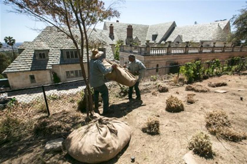 ARCHIVO - En esta imagen de archivo, jardineros retirando hierbas antes de las restricciones de agua previstas en la Greystone Mansion and Park de Beverly Hills, California. (AP Foto/Damian Dovarganes, Archivo)