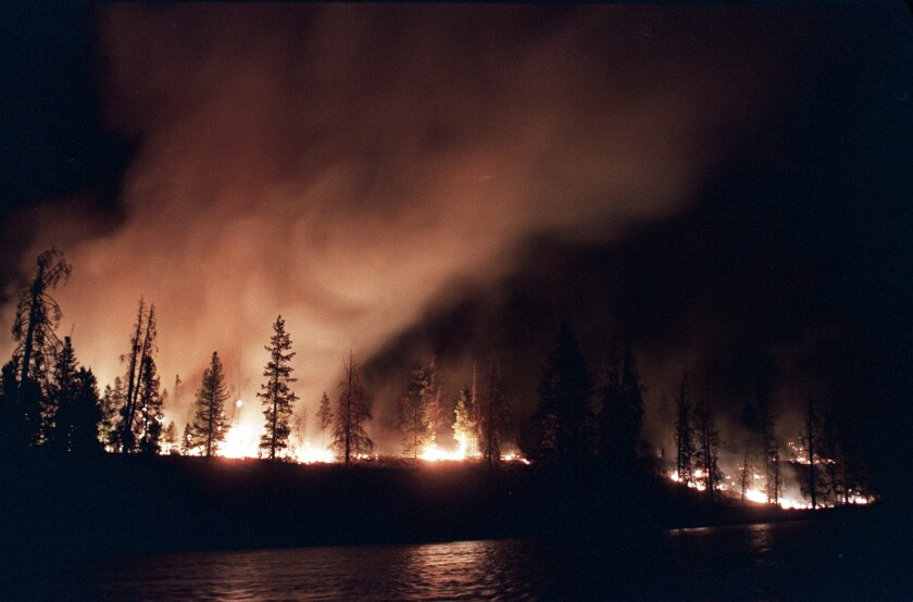 A fire blazes in Yellowstone National Park in 1988.