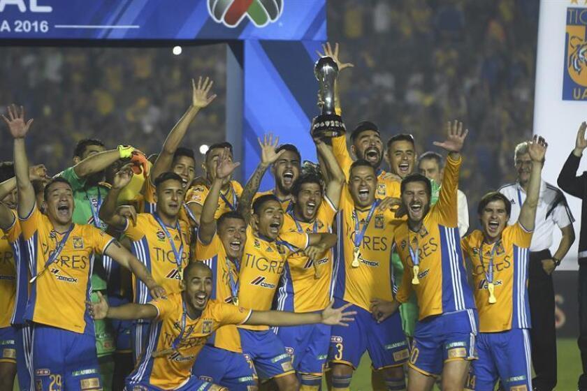 Los Tigres de la UANL, campeones del fútbol mexicano, regresaron hoy a los entrenamientos, pero sin varias de sus figuras principales que estarán ausentes en el partido del sábado ante Santos Laguna en el Clausura 2017. EFE/ARCHIVO