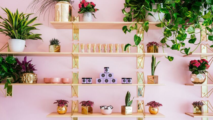 Holy matcha is a chic pink boutique.