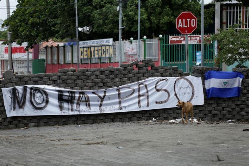 """El Gobierno de Donald Trump defendió hoy que la convocatoria de elecciones anticipadas en Nicaragua puede representar """"un camino constructivo"""" para superar la crisis sociopolítica que ha dejado ya cerca de 200 muertos en ese país centroamericano. EFE/ARCHIVO"""