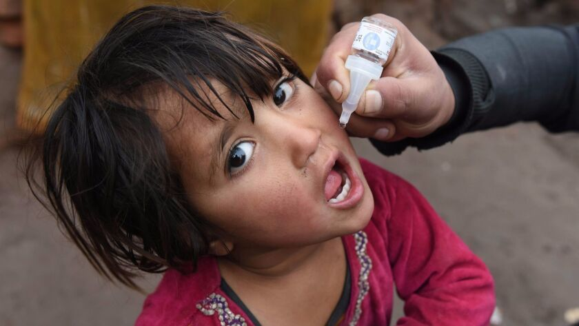 A health worker administers a polio vaccine to a child in Jalalabad, Afghanistan. The disease is still endemic in three countries: Afghanistan, Pakistan and Nigeria.