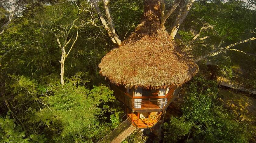 Sleep above the jungle at Treehouse Lodge in the Peruvian Amazon.