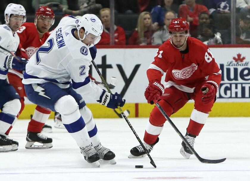 Tampa Bay Lightning defenseman Luke Schenn (2) keeps the puck away from Detroit Red Wings center Frans Nielsen (81) during the first period of an NHL hockey game Sunday, March 8, 2020, in Detroit. (AP Photo/Duane Burleson)