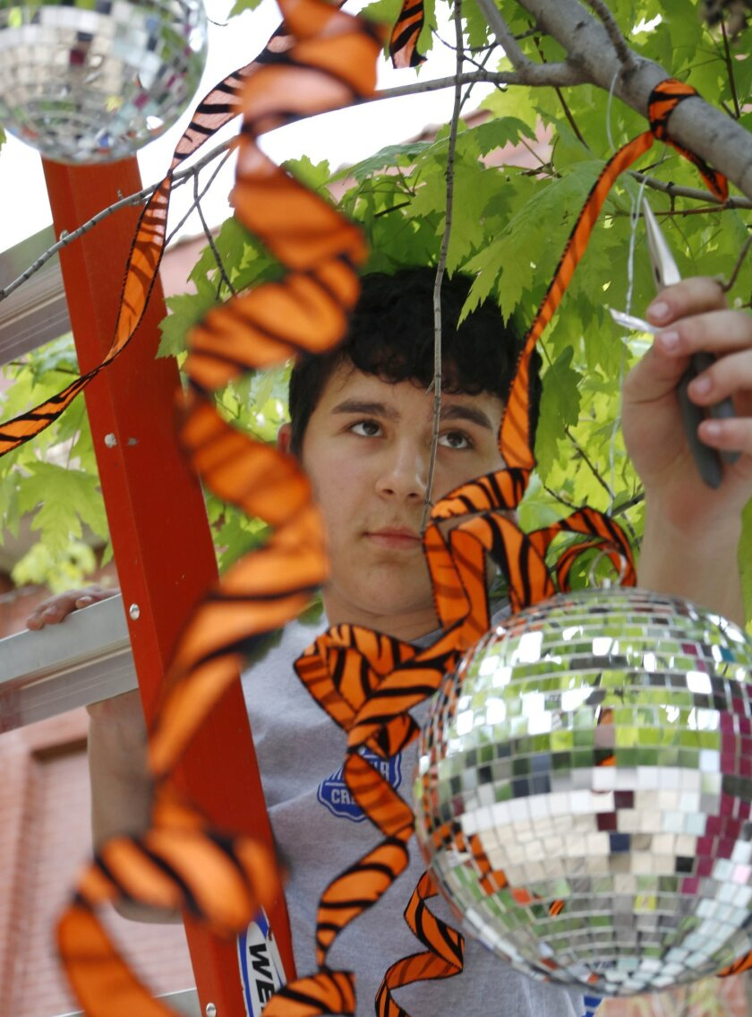In this Friday, May 15, 2015 photo, Boy Scout David Fite hangs a disco ball in a tree outside the Nettelhorst School in Chicago for a project in preparation for the city's nearby Gay Pride Parade. In the midst of a ban of openly gay Scout leaders, for Fite, part of his Eagle project's purpose was t