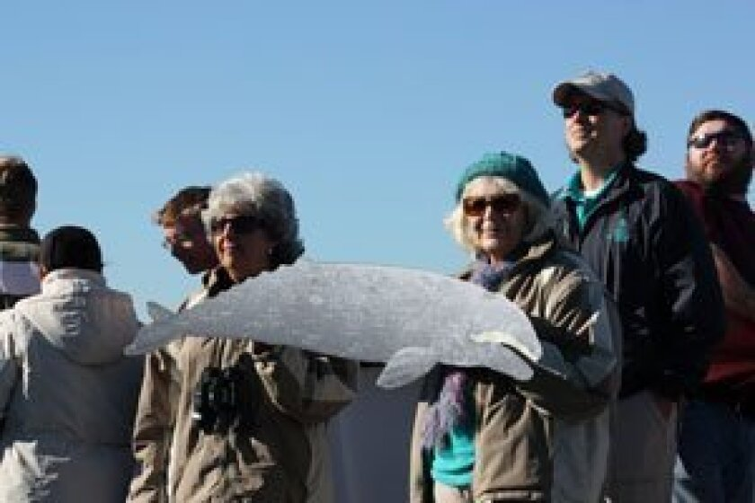 Birch Aquarium docents, from left Gaynell Schenck, Mary Ann Rogers and Wes Holland show off a model of a gray whale as the cruise heads out of San Diego Bay. Photos by Kathy Day