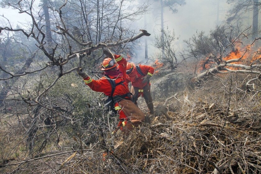 An inmate from a McCain Valley fire crew threw brush cut from the fire line they were making around the burn area. The U.S. Forest Service has been performing a series controlled burns in the Laguna Mountains with help from other firefighting agencies.