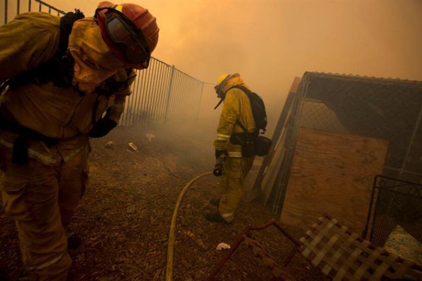 """Los equipos que luchan contra """"Holy"""", un devastador incendio que ha consumido más de 9.192 hectáreas en el sur de California y obligado a evacuar a más de 21.500 personas, están cerca de controlar un 50 % del fuego, según señalaron hoy autoridades forestales. EFE/Archivo"""