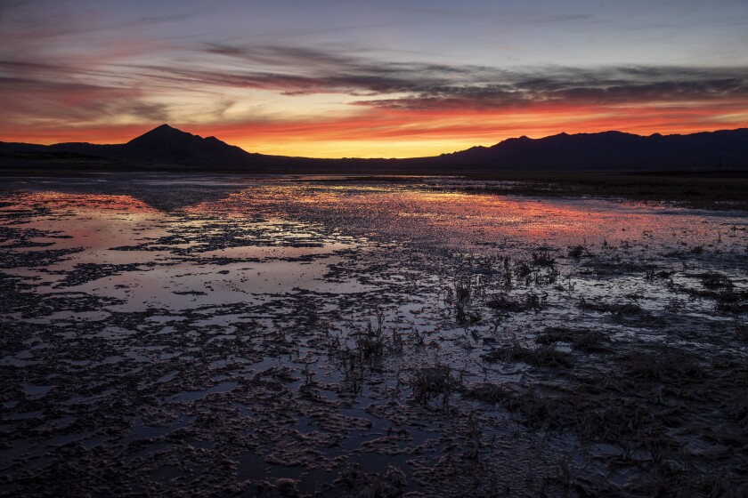 Sunset reflects light off the shallow waters of Grimshaw Lake in Tecopa, Calif.