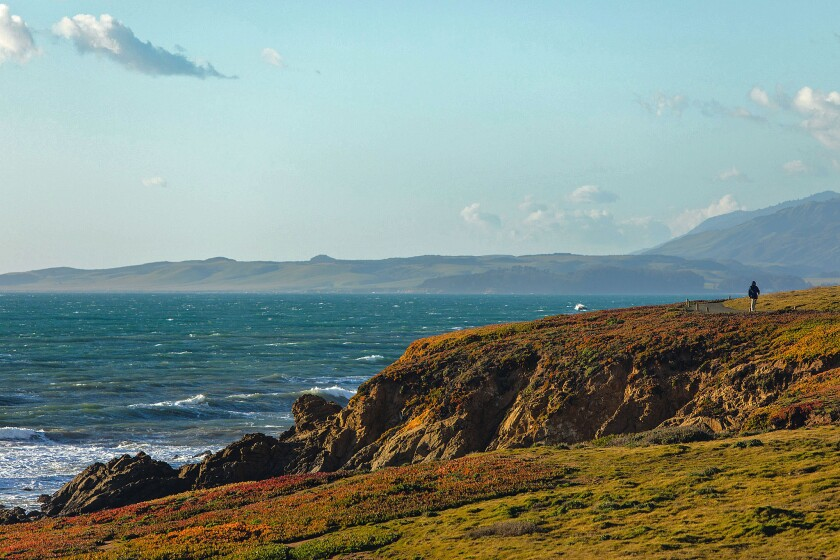 Take in the ocean air as you stroll along the bluffs of the Fiscalini Ranch Preserve in Cambria.