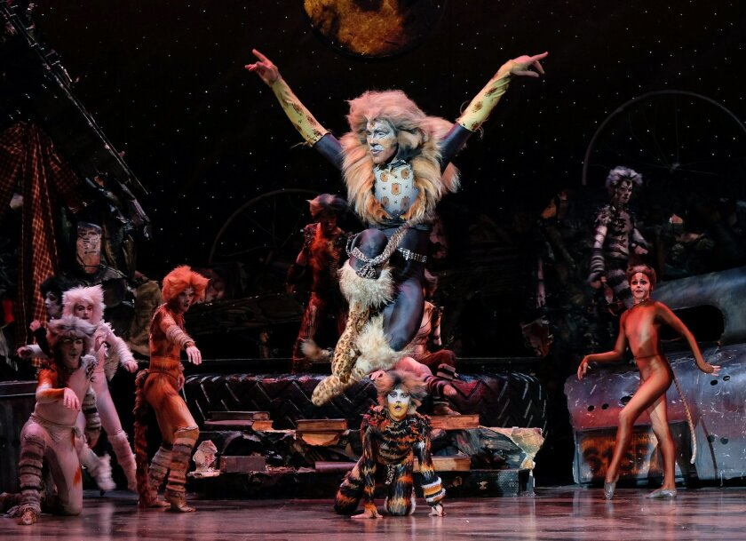 "Justin Ray stars as Rum Tum Tugger in San Diego Musical Theatre's ""Cats"" at the North Park Theatre."