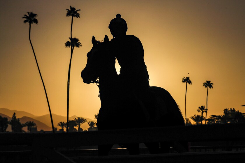 Horses go through early-morning training regimen as Santa Anita opening day resumes racing on March 29.