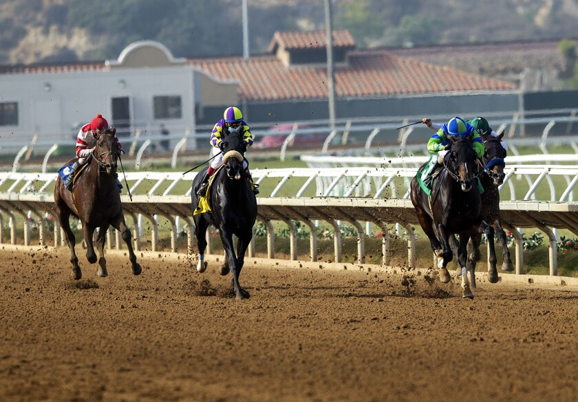 Extra Hope, second from right, with Juan Hernandez aboard, wins the Grade III, $100,000 Native Diver.