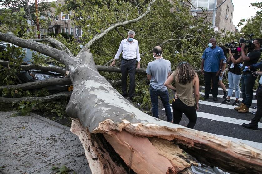 New York City Mayor Bill de Blasio talks with residents next to a fallen tree
